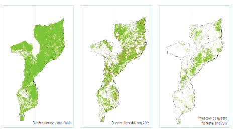 Satellite imagery shows deforestation